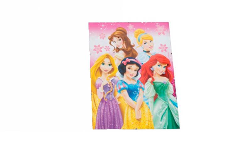 Κορνίζα κρεμαστή 30x40cm με γυαλί και κλιπς, Disney Princess 2013275 - Disney μωρά και παιδιά   παιδική διακόσμηση