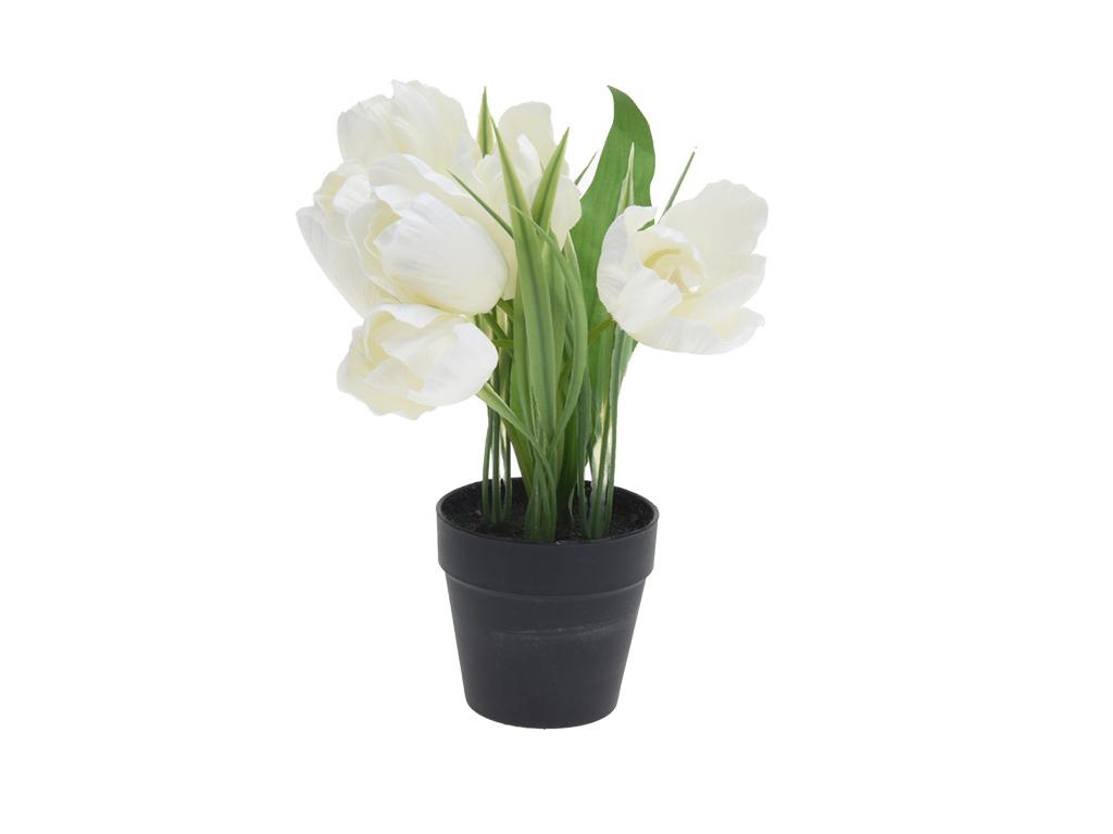 Διακοσμητικό Φυτό Τουλίπα από Πλαστικό με Γλάστρα σε Μαύρο χρώμα, 20cm, 31700280 διακόσμηση και φωτισμός   διακόσμηση τραπεζίου και ανθοδοχεία